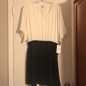 Halston Women's Dress Black Cream Size 10